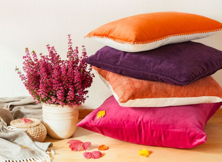 Throw pillows beside potted flowers